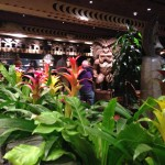 Ohana @ Polynesian Village Resort